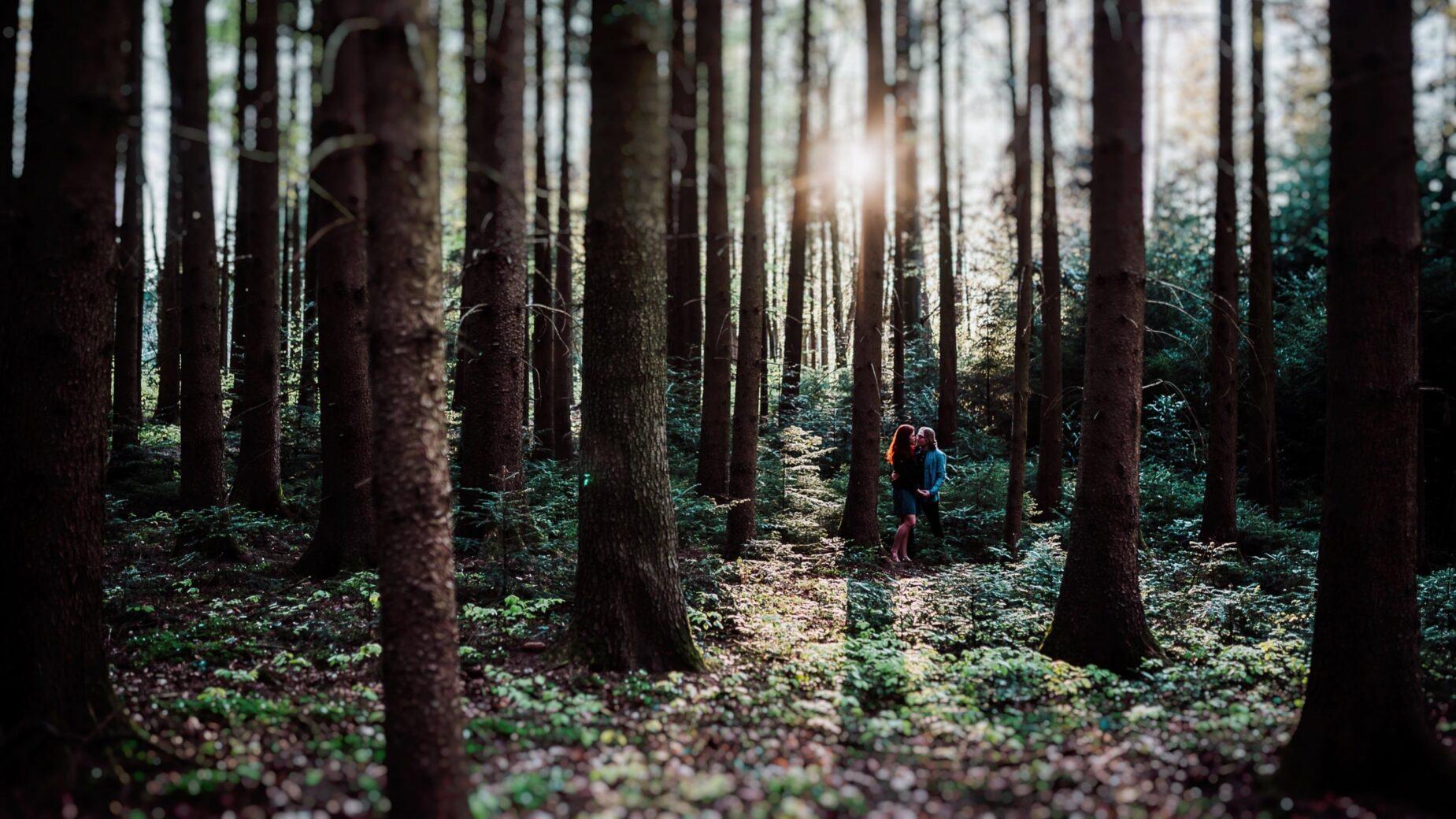 Pärchenfotos bei Abendsonne im Wald, Frau mit roten Locken, Waldshooting